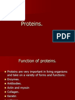 proteinsyr12-111011115041-phpapp01