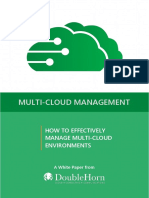 DoubleHorn_MultiCloudManagement_Whitepaper