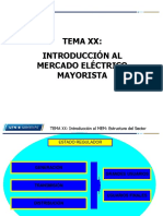 Introducción Al Mercado Eléctrico Mayorista