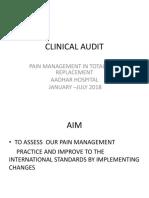 Pain Management Audit