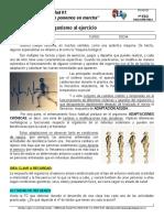 1eso_ud01_ficha03 Adaptación Al Esfuerzo
