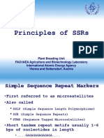 SSR MARKERS