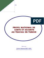 isst_profile_santé_sécurité_travail_2007.pdf