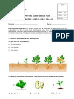 01D2019CN.pdf
