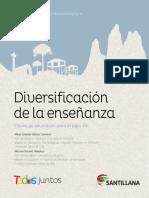 Diversificacion de La Enseñanza Santillana