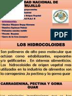 330034291-HIDROCOLOIDES-ORIGEN-VEGETAL-pptx.pptx