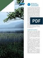 Faros y Playas Salvajes Pagina 24
