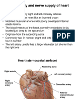 Blood Supply and Nerve Supply of Heart