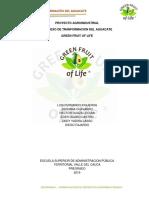 Proyecto Transformacion Del Aguacate