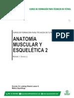 Documento Anatomía Muscular y Esquelética 2.pdf