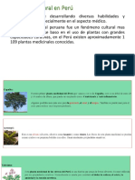 Medicina Natural en Perú