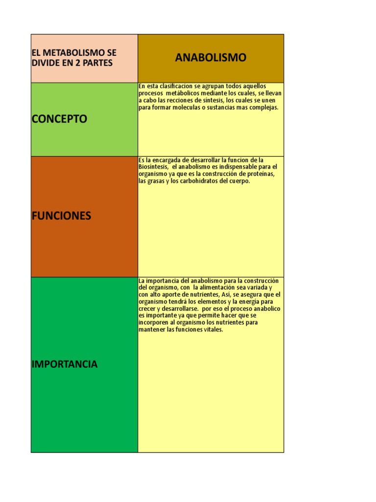 Aprender cómo calcular metabolismo basal harris benedict
