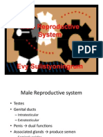 Male Lecture