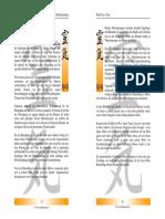 Reikimaster - Reiki-Praxis - Empfindungen.pdf