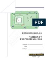 1534-RMA-Resumen N° 1 Números (7%).pdf
