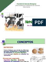 Nutrición Generalidades