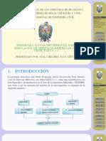 Tesis UNSCH Ivan Ayala - Slides.pdf