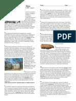 Article - Body farm