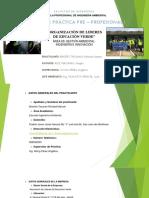 Presentacion Informe Tecnico Pp1