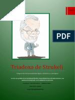 Triadoxa de Strukelj (Final)