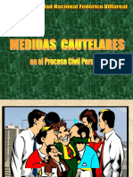 07. Exposicion Sobre Medidas Cautelares