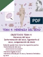 Documents_genetica_gen_Tema 4 Herencia Del Sexo201337-197