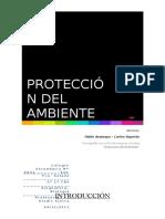 Monografía Protección del ambiente 2011