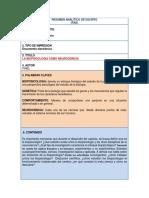 FICHA RAE ORIGINAL.docx