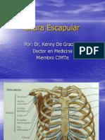 Cintura-Escapular5.pdf