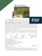 Cara Setting Multiplayer Lan Age of Empire II