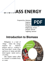 Biomass Energy Group-2