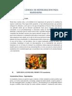 camara frigorifica de la mandarina.docx