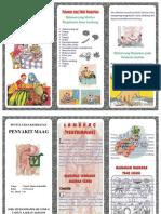 Leaflet Maag