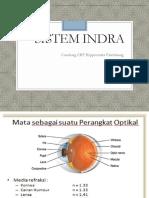 Sistem indra.pdf
