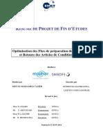 R+-«sum+-« du rapport.pdf