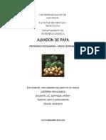 Almidon de Papa- Modulo Experimental Actual 2