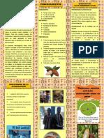 RCUN°200-2018-UCV-último LÍNEAS DE INVESTIGACIÓN VERIFICADO OKKKKKKKK JUNIO (1)