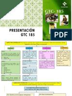 7. Presentación Norma Gtc 185