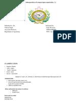 Presentation2 (1)