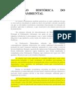 EVOLUÇÃO HISTÓRICA DO DIREITO AMBIENTAL.docx