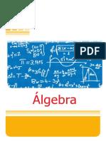 Algebra 1° Año Secundaria.pdf