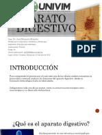 jacostaaparatodigestivo-161208231550 (1)