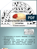 A Fileira Frontal Da Orquestra