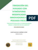 TAZ-TFM-2012-577.pdf