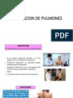 Exploraciond e Pulmones (1)