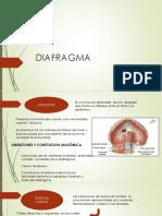 Diafragma Terminado