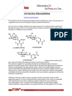 Peptide Synthesis Service-Glycosylation
