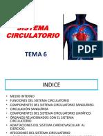 Tema 6-Sistema Circulatorio