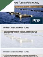 Polo do Ceará (Castanhão e Orós).pptx