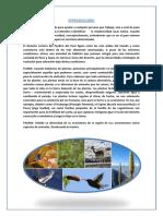 BIODIVERSIDAD DE ICA.docx